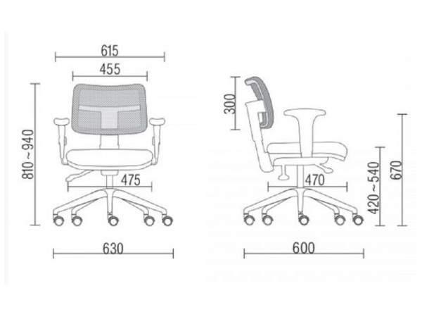Cadeira Giratória Executiva Encosto Tela C/B Brizza